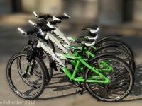 Kinder Mountain Bike in München leihen